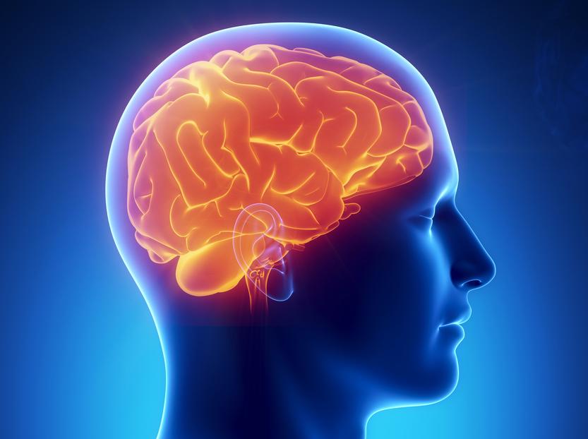 Как восстановить мозг и нервную систему после запоя