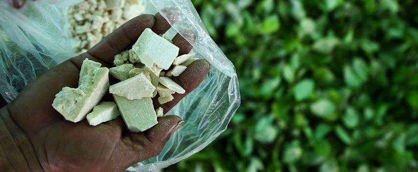 История распространения кокаина