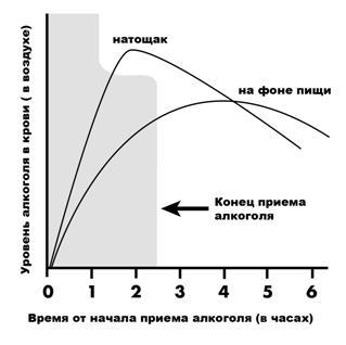 Сколько длится алкогольное отравление