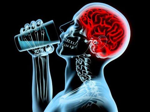 Мозг и алкоголь: влияние и восстановление мозга после алкоголя