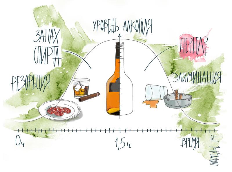 От какого алкоголя меньше перегара